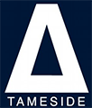 Logo for Tameside VIP - A volunteer community powered by TeamKinetic